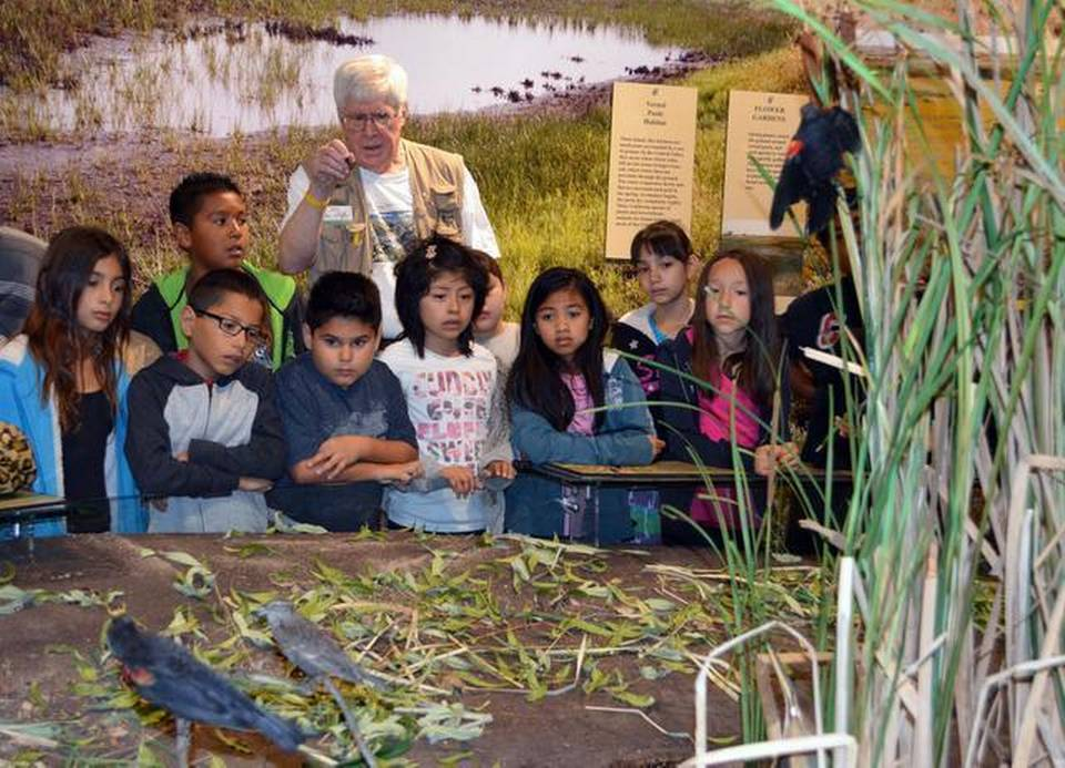 Docent Mike Clarke shows Martone Elementary                     third-graders a wetlands habitat during the first                     school tour of the Great Valley Museum in its new                     quarters on Modesto Junior College West Campus in                     Modesto on Tuesday.